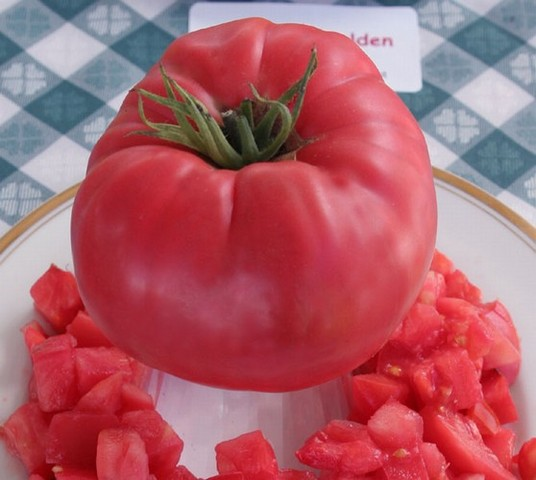ace 55 tomato variety delicious